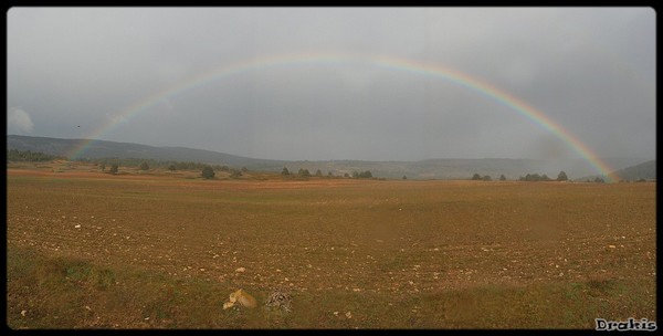 panor arco iris